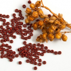10/0 Czech Glass Seed Beads Preciosa 20g Brown